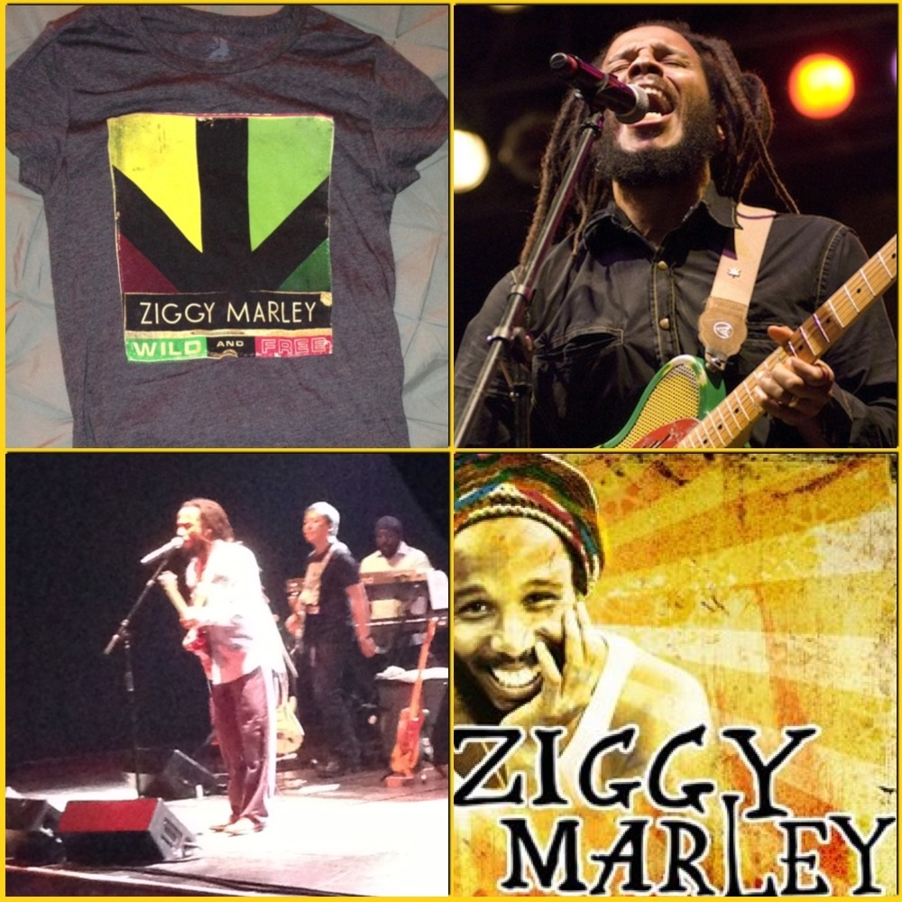 Wild And Free – A Musical Snack by Ziggy Marley