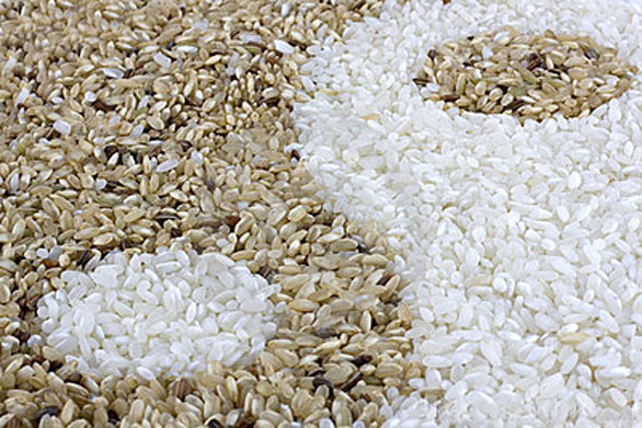 White Rice Versus Brown Rice ~ What's All The Hype